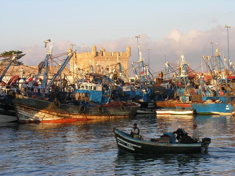 Vieux port d'Essaouira