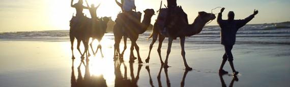 Randonnée Essaouira : excursions et balades à dos de dromadaires.